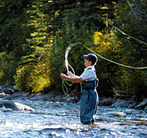 fishermanbutternut